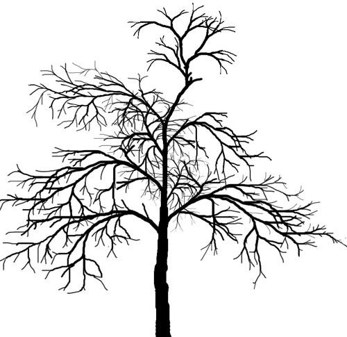 рисунки голых деревьев-пы2